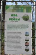 installatie Ode aan Groen in museumtuin